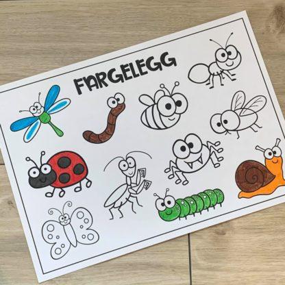 Opgaver insekter og småkryb 2