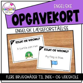 Opgavekort Engelsk Lasning